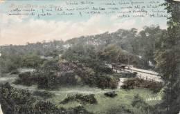 Bostal Heath And Wood, 1906 - London Suburbs
