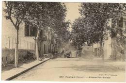 34/ PAULHAN - Avenue Paul Pelisse - Edition Vessard N 2010 (voiture) - Paulhan