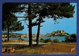 2B CALVI Citadelle, Vue De La Pinède Bordant La Plage - Animée - Calvi