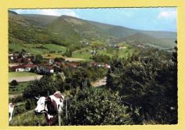 ROISSIAT-COURMANGOUX - COMMUNE DE COURMANGOUX 127 - VUE GENERALE SUR LA VALLEE HAMEAU DE CHEVIGNAT - VACHE - AIN  01 - France