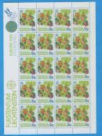 LIECHTENSTEIN - Europa 1989   II° - Blocks & Kleinbögen