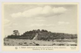 Campine N°5 : Relief : Butte Témoin Au Bord Sud-occidental Du Plateau Campinois, Bolderberg *f5847 - Heusden-Zolder
