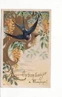 Carte 1907 Belle Carte Gaufrée , Hirondelle Souvenir : Un Bon Baiser De Champagné Les Marais - Autres Communes