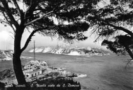 """Bellissima Cartolina  Anni  60  """"   Isole Tremiti - S. Nicola Visto Da S. Domino """" - Foggia"""