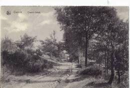 Chemin Boisé - Genk