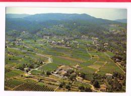 RIBES   ( Ardèche  )  Vue Générale - France