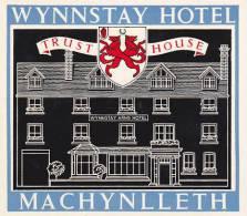 ENGLAND MACHYNLLETH WYNNSTAY HOTEL VINTAGE LUGGAGE LABEL