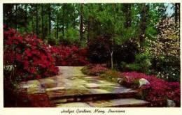 Many. Hodges Gardens   . - Etats-Unis