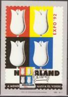 Nederland, Netherlands, 1992, Painting Of Mondriaan, Tulips, Maximumcard - 1992 – Sevilla (Spanje)