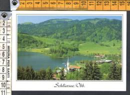 E1788 Schliersee - Obb. - Miesbach - Ed. E. Feldbauer / Non Viaggiata - Miesbach