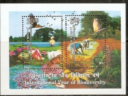 India 2010 International Year Of Biodiversity Animals Owl Eagle Nature M/s MNH Inde Indien - Milieubescherming & Klimaat