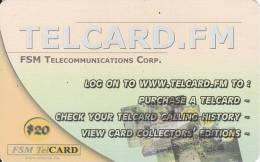 Micronesia, FSM-R-125, Twelfth Edition (Remote Memory), Telcard.fm, 2 Scans. - Micronésie