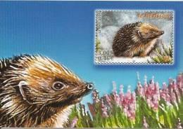 CPM France 2001 La Poste, Série Animaux Des Bois,  Hérisson / Hedgehog / Igel / Timbre Illustré - Timbres (représentations)