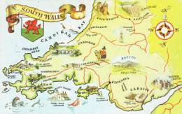 SOUTH WALES MAP CARD - Cartes Géographiques