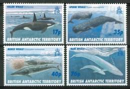1996 British Territoro Antartico Vita Marina Marine Life Pesci Fish Fische Poissons Set MNH** Po128 - Territorio Antartico Britannico  (BAT)
