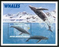 1996 British Territoro Antartico Vita Marina Marine Life Pesci Fish Fische Poissons Block MNH** Po130 - Territorio Antartico Britannico  (BAT)