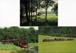 EVRY (91) Lot De 3 CPM Train Du PARC DE SAINT-EUTROPE Locomotive 030 DECAUVILLE Fermé En 2003 - Trains