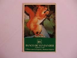 Bank/Banque/Banco De Santander Squirrel Ecureuil Esquilo Spanish Pocket Calendar 1981 - Calendriers