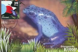 D07996 CARTE MAXIMUM CARD RR 2007 NETHERLANDS - BLUE POISON DART FROG CP ORIGINAL - Frogs