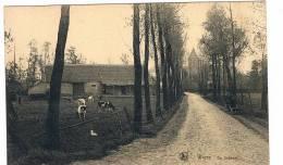 Wieze De Sasbaan - Lebbeke