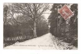 CPA - 78 - Yvelines : Saint Léger En Yveline : Le Chêne De La Citerne + Caché Militaire - St. Leger En Yvelines