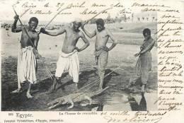 CHASSE AU CROCODILE EN EGYPTE CHASSEUR HUNT BRACONNAGE 1900 - Chasse