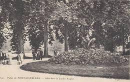 Dép. 77 - Palais De Fontainebleau. Animée. - Allée Dans Le Jardin Anglais. E.L.D. N° 390 - Fontainebleau