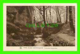LUXEMBOURG - PROMENADES HAUPESCHBACH - SÉRIE 9, No 158 - E. A. SCHAACK - NELS - - Cartes Postales