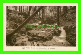 LUXEMBOURG - LE HALLERBACH - SÉRIE 9, No 157 - E. A. SCHAACK - NELS - - Autres