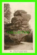 LUXEMBOURG - ROUTE BERDOF, VOGELSMUHLE - SÉRIE 9, No 154 - E. A. SCHAACK  - NELS - PETIT SUISSE LUXEMBOURGEOISE - - Cartes Postales