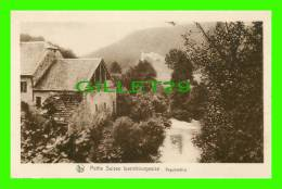 LUXEMBOURG - VOGELSMUHLE - SÉRIE 9, No 153 - E. A. SCHAACK  - NELS - PETIT SUISSE LUXEMBOURGEOISE - - Autres
