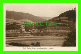LUXEMBOURG - GRUNDHOF - SÉRIE 9, No 151 - E. A. SCHAACK  - NELS - PETIT SUISSE LUXEMBOURGEOISE - - Autres