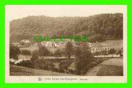 LUXEMBOURG - MULLERTHAL - SÉRIE 9, No 150 - E. A. SCHAACK  - NELS - PETIT SUISSE LUXEMBOURGEOISE - - Autres