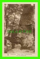 ECHTERNACH, LUXEMBOURG -  ENTRÉE DES ZICKZACKSCHLUFF - SÉRIE 9, No 37 - E. A. SCHAACK - NELS - PETITE SUISSE - - Echternach
