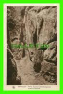 ECHTERNACH, LUXEMBOURG -  ENTRÉE DU LABYRINTHE - SÉRIE 9, No 22 - E. A. SCHAACK - NELS - PETITE SUISSE LUXEMBOURGEOISE - - Echternach