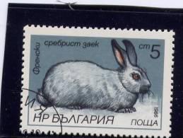 Bulgaria, 1986, CTO NH, # 3146, Hares & Rabbits - Bulgarie