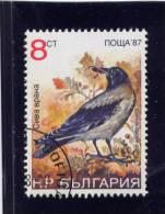 Bulgaria, 1987, USED,  # 3328 D. BIRDS - Bulgarie