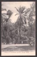 SR16) Ceylon - Entrance To Peradeniya Gardens, Kandy - Sri Lanka (Ceylon)