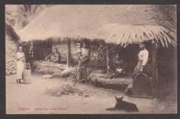 SR22) Ceylon - Native Hut In The Interior - Sri Lanka (Ceylon)