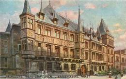 LUXEMBOURG - Palais Grand Ducal - Carte Colorisée - Oilette - 2 Scans - Luxemburg - Stad