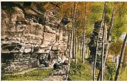 ECHTERNACH - Petite Suisse - Müllertal - Les Rochers Promenade B Animée - Carte Colorisée - Edition W. Capus - 2 Scans - Echternach
