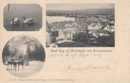 ZUG - SUISSE SCHWEIZ SVIZZERA- STADT ZUG MIT HIRSCHPARK UND SCHWANENPAAR  VG 1903 BELLA FOTO D´EPOCA ORIGINALE 100% - ZG Zug