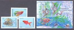 2010. Uzbekistan, Aquarium Fishes, 3v + S/s, Mint/** - Uzbekistán