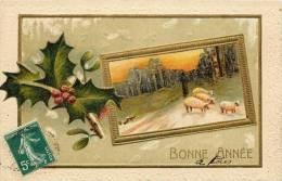 BELLE CPA GAUFREE : NOUVEL AN BONNEE ANNEE HOUX 1910 - Neujahr