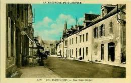 56 PLUVIGNER Rue Saint-Michel - Pluvigner