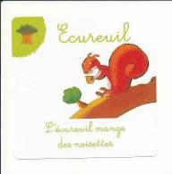 Image /  E Comme Ecureuil  / L'écureuil Mange Des Noisettes / Fruit Noisette /  Animaux Animal Squirrel  //  IM 69/3 - Chromos