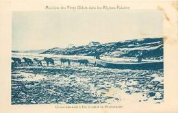 : Réf : L-12-0309 :  Missions Esquimaudes  Chiens De Traineau - Canada