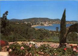 Vue Générale De La Ville - Sainte-Maxime
