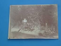 Ancienne Photo Originale ATTELAGE DE CHIEN Lieu A Identifier - Anciennes (Av. 1900)