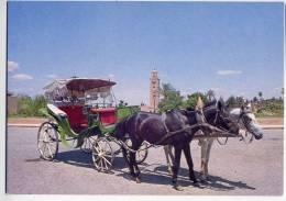 MAROC INFINI --- MARRAKECH - Invitation à La Promenade (attelage Et Carriole,ménara Au 2ème Plan)---Belle Carte - Marrakech
